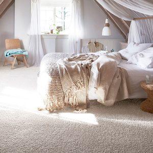 שטיחים מקיר לקירBLSSTA