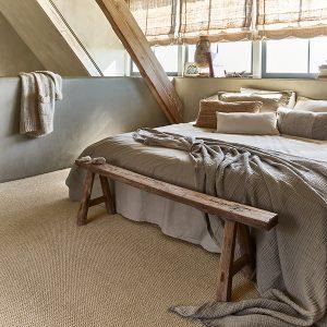 שטיחים מקיר לקירZESTTA